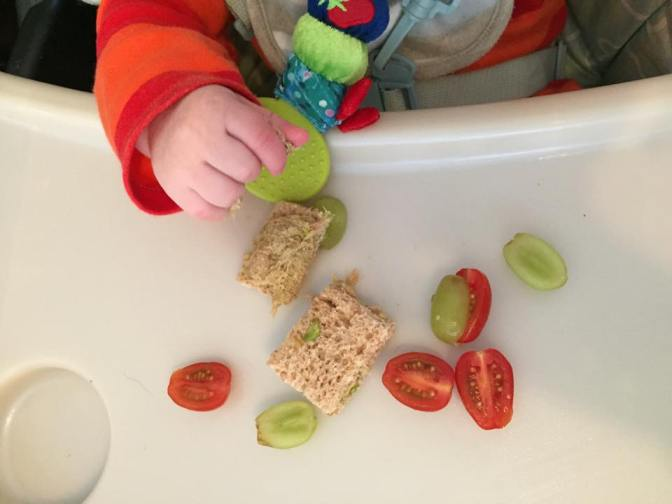 First steps to weaning – a dodging tigers guide.